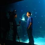 TV4  pratar haj med Klas