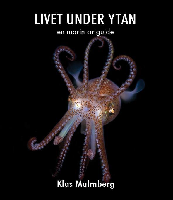Livet under ytan-en marin artguide